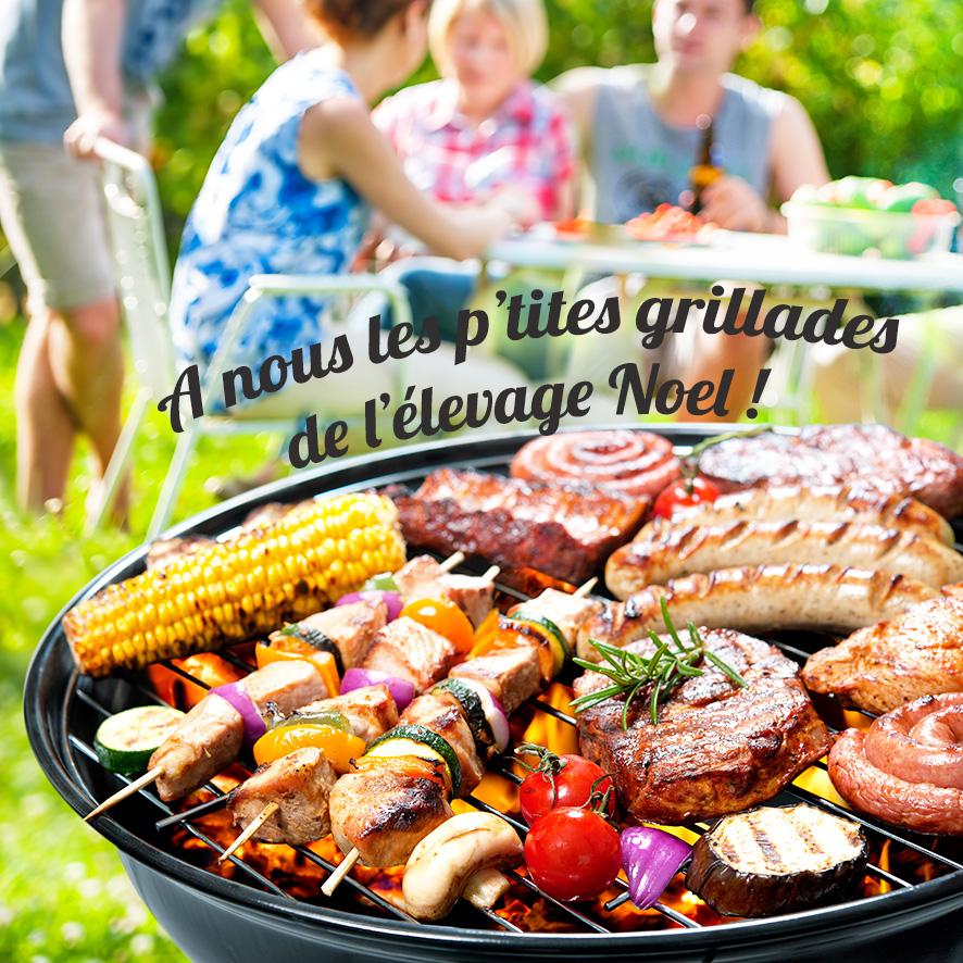 Elevage NOEL barbecue
