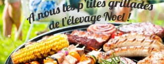 Elevage NOEL barbecue